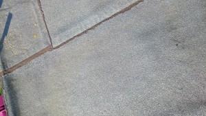 vloeibaar dak (8)