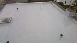 vloeibaar plat dak (1)