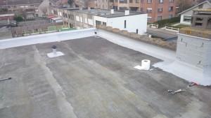 vloeibaar plat dak (8)